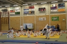 Judo-clinic Deborah Gravenstijn_7
