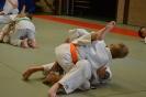 Samen trainen met Budo Ryu_12
